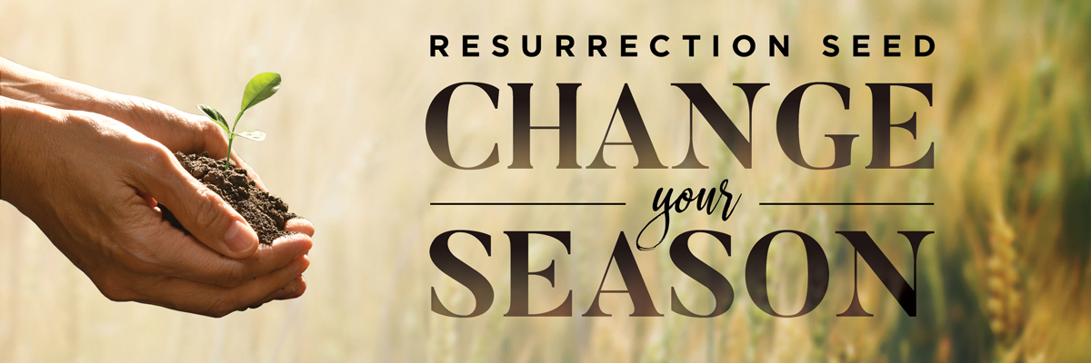 >>Resurrection Seed<<  Change Your Season!