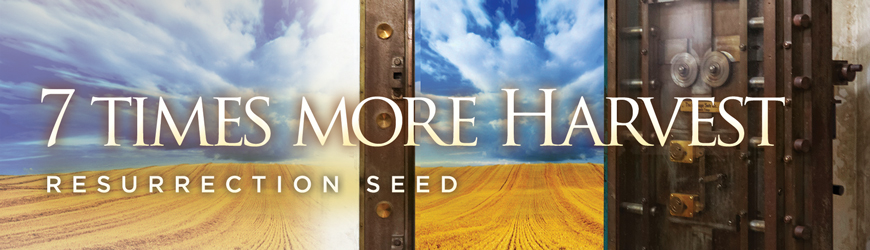 Resurrection Seed • 7 TIMES MORE HARVEST!